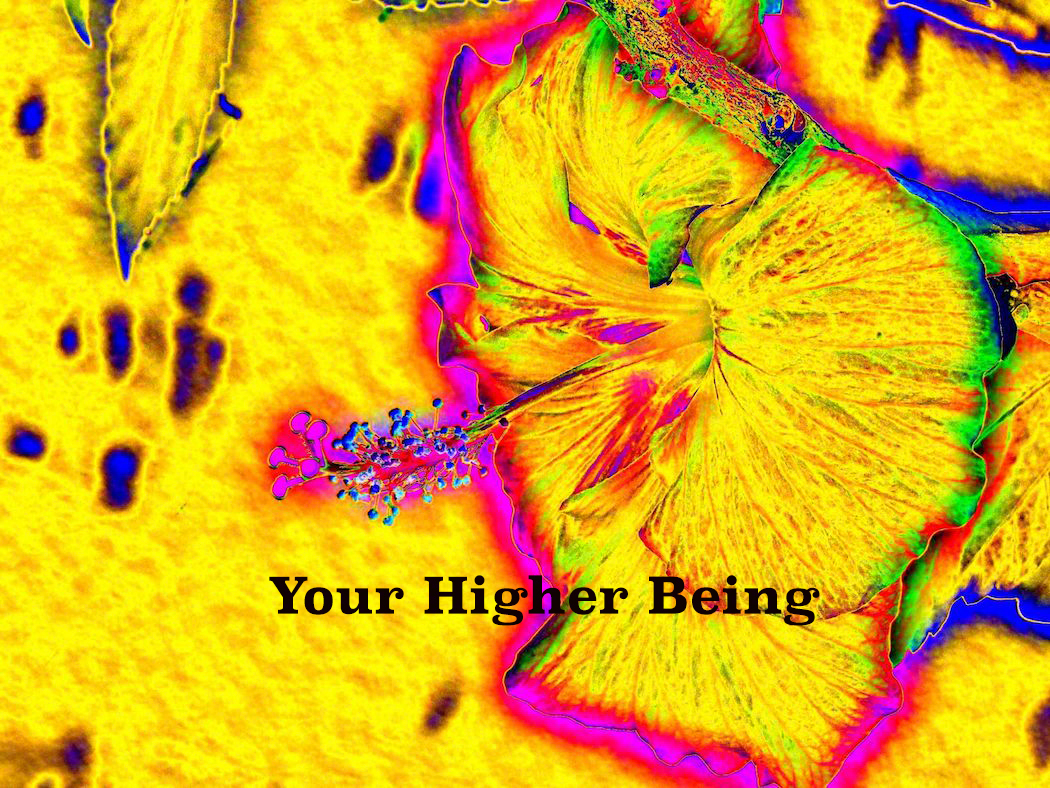 AG S1-018 Your Higher Being