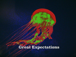 AG S1-006 Great Expectations