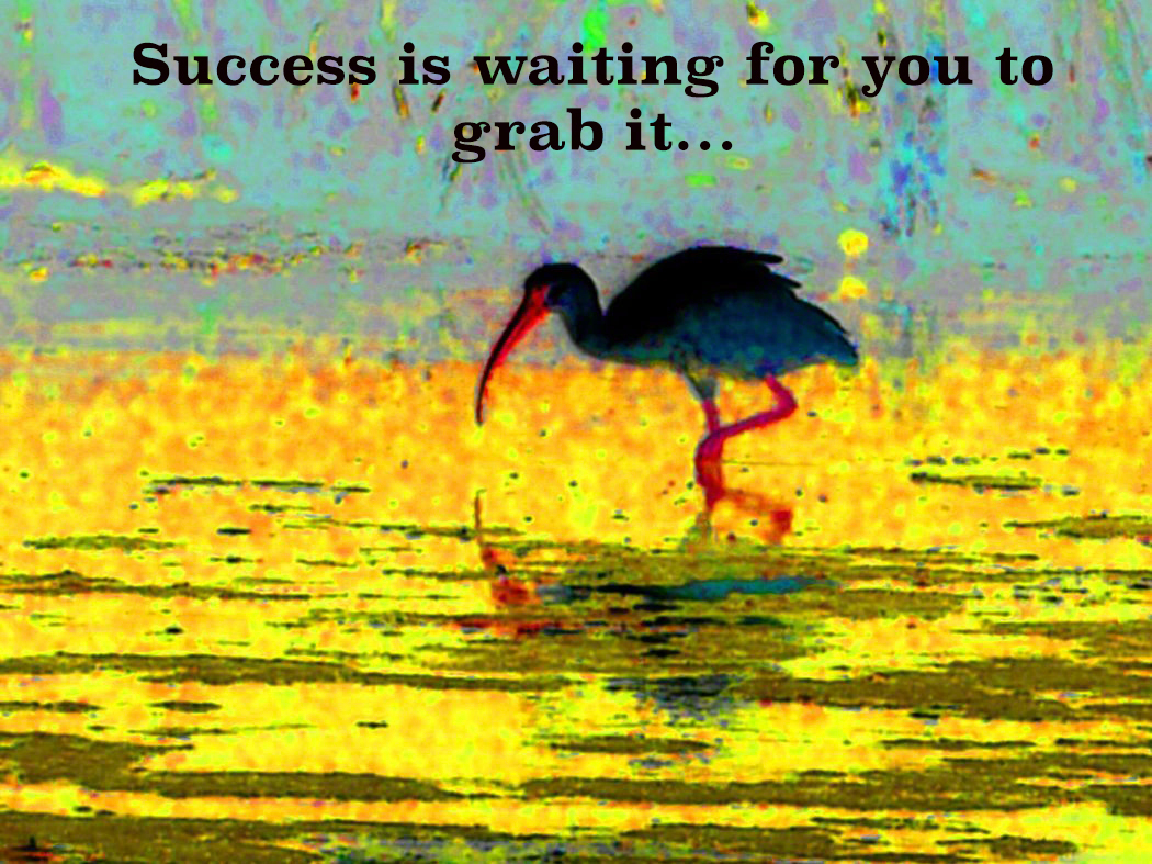 AG S1-021 Success is waiting for ...