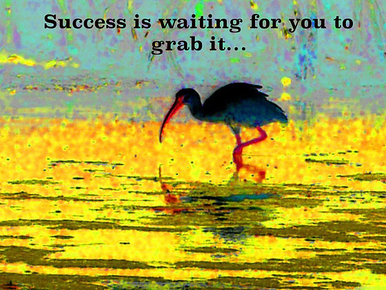 Success Is Waiting For You To Grab It.....