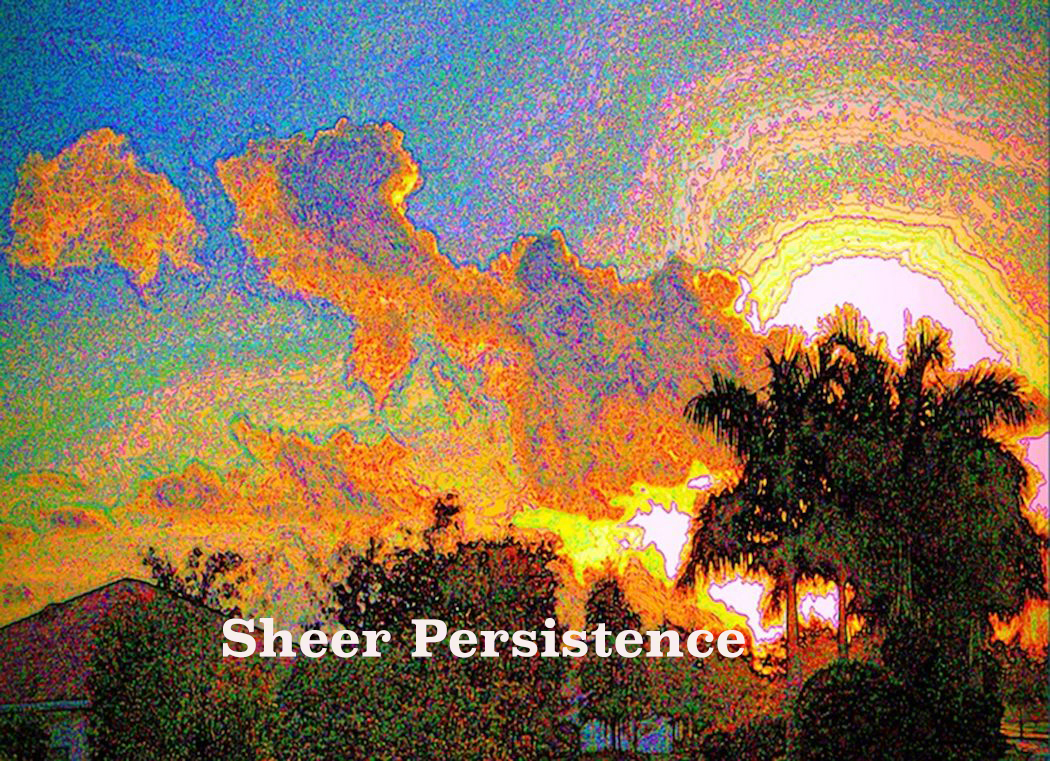AG S1-013 Sheer Persistence