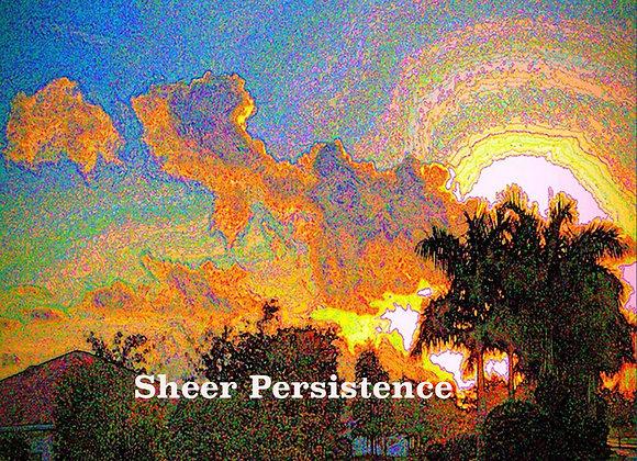Sheer Persistence