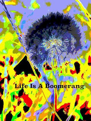 Life Is A Boomerang