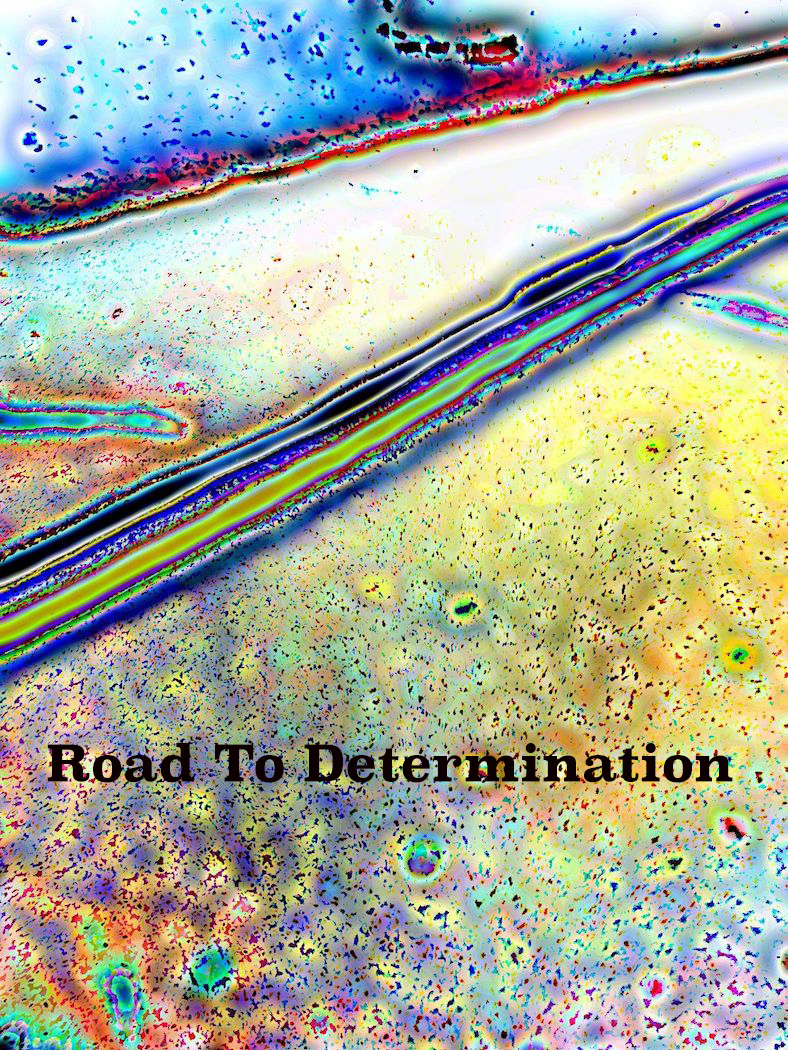 AG S1-020 Road To Determination