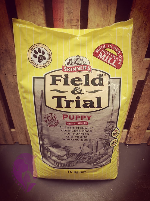 Skinners Field and Trial Puppy