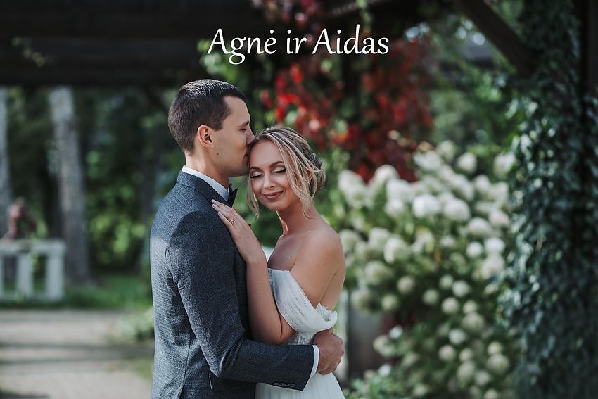 Agnė ir Aidas (v).png