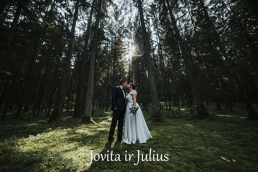 Jovita ir Julius (v).png