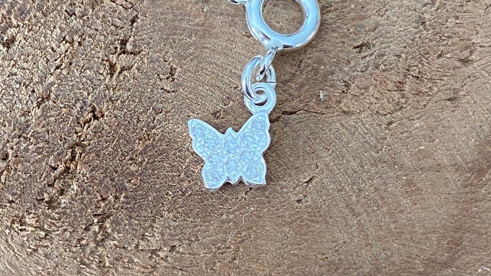 Papillon m