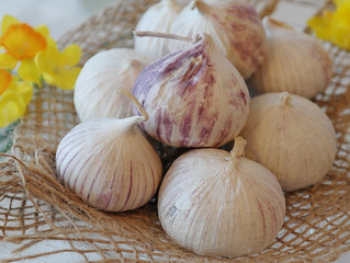 PROTECT YOURSELF FROM THE UNDEAD (Or, Just Enjoy Some Fresh Garlic)