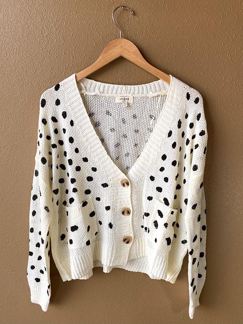 Dalmatian cardigan