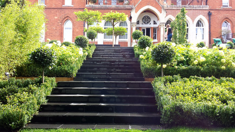 paved steps and planting
