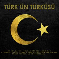 türkün türksü