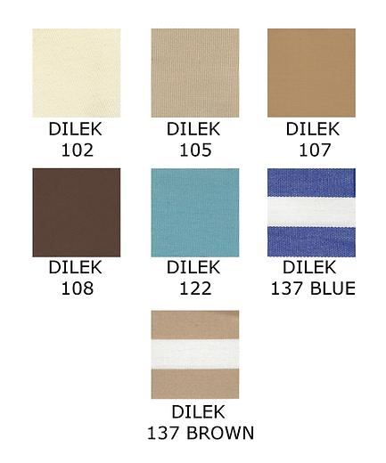 Dilek-Canvas-Thumbnail.png