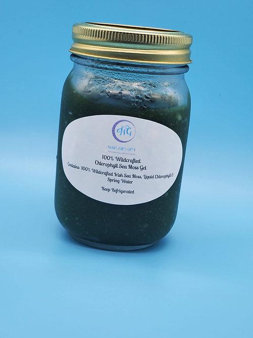 Chlorophyll Sea Moss Gel