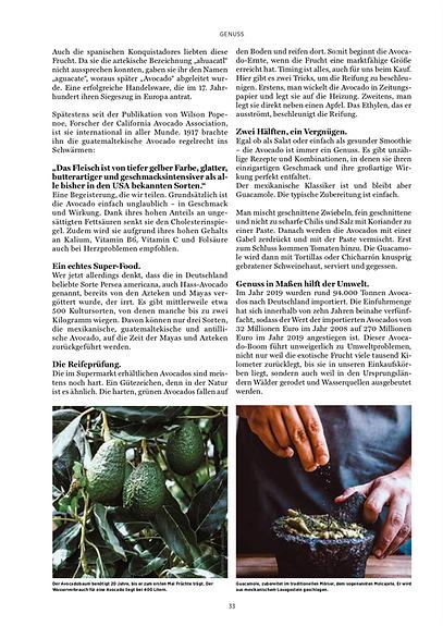Küchen und Design Magazin_Avocado_2.png