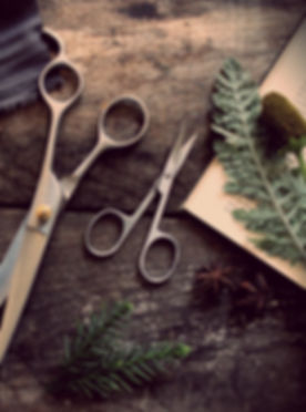 barber-shears-scissors.jpg