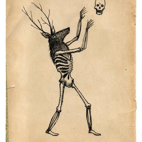 deer skeleton.jpg