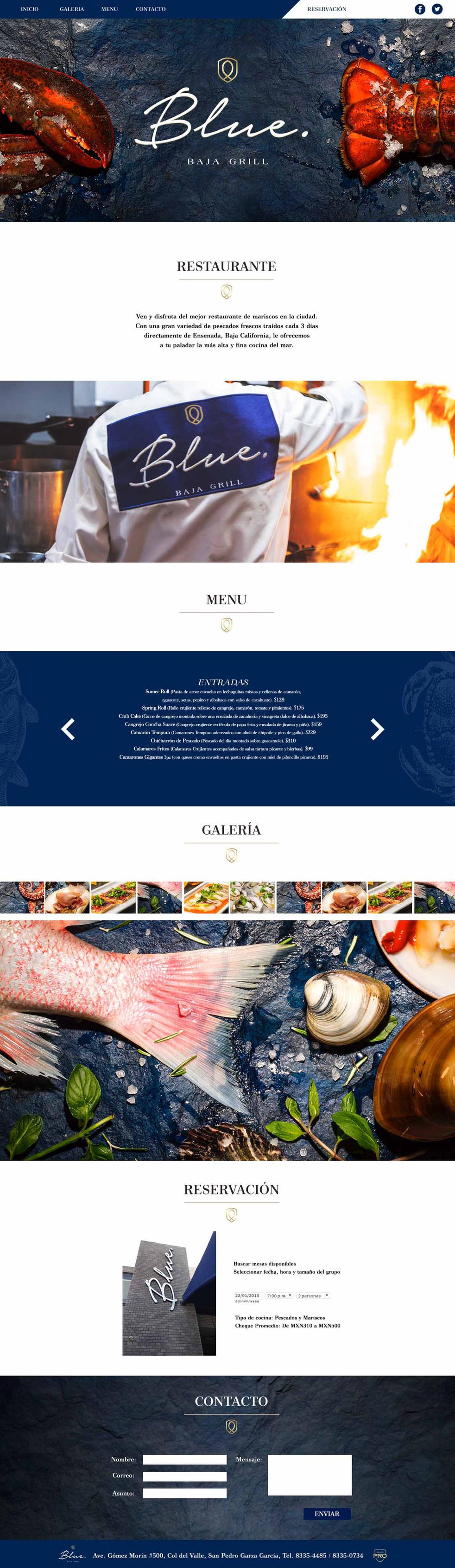 WEB-BLUE.jpg