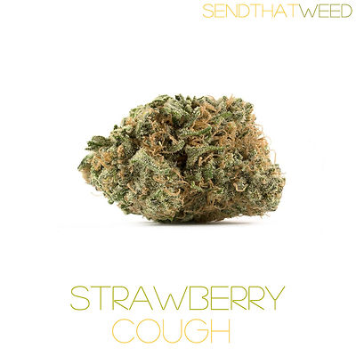 strawberry cough www.sendthatweed.com.jp