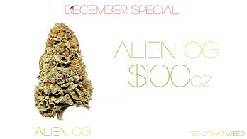 alien SPECIAL.jpg