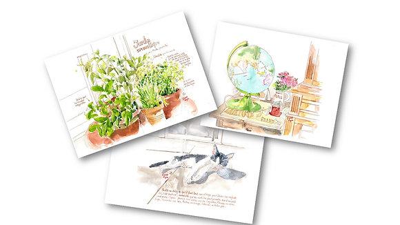 Cartes postales - Chrysalide