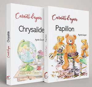 Visuel Papillon+Chrysalide - court.jpg