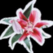 Blumenmädchen