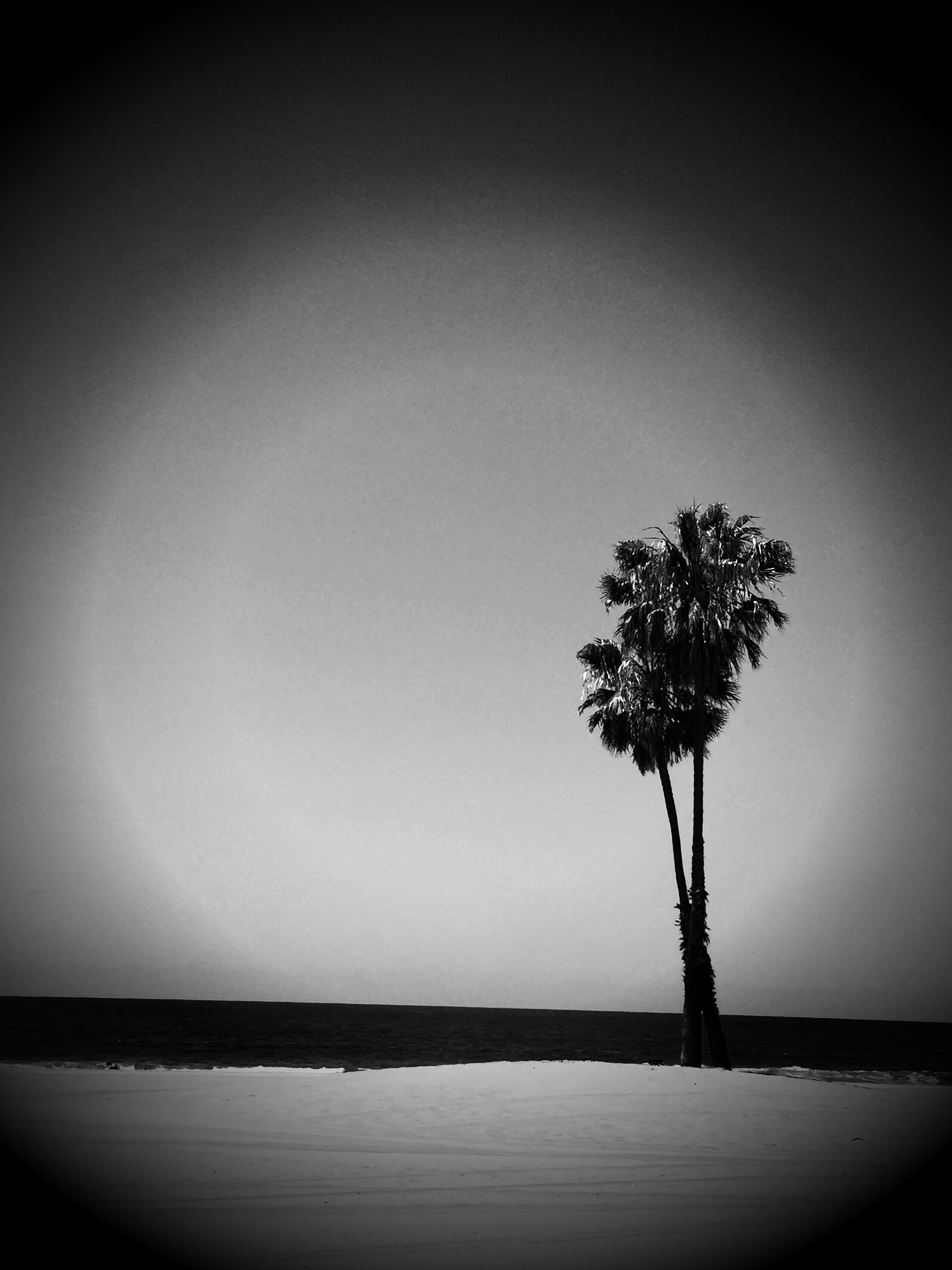 LOS ANGELES 05:15