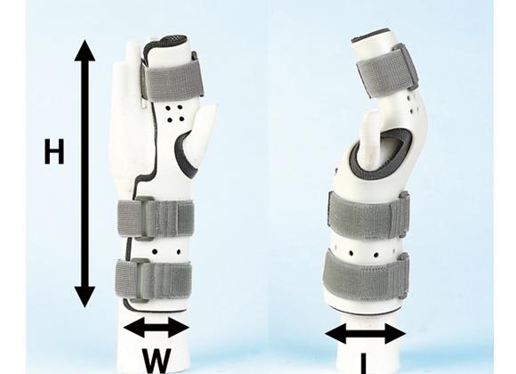 ラディアルガーター/橈骨側