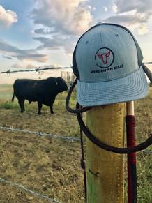 Weiss Ranch 2019