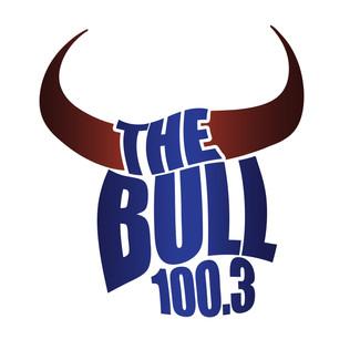 Bull100-33.jpg