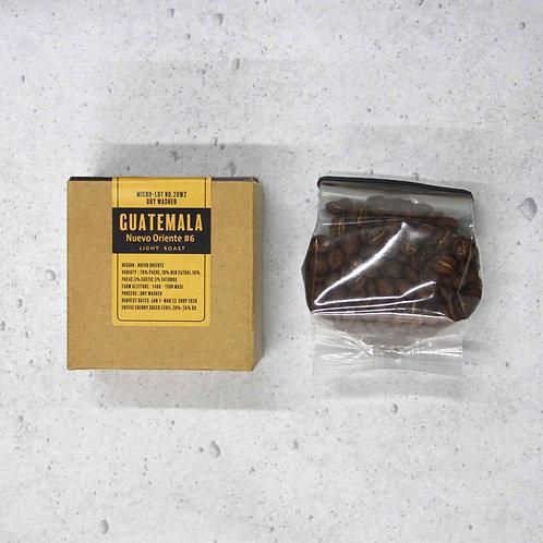 【浅煎り】SATURDAYS Coffee Rasters グアテマラ ヌエヴォオリエンテ20W2