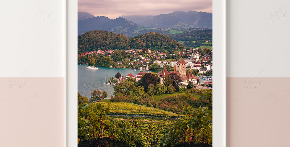Spiez between Vines