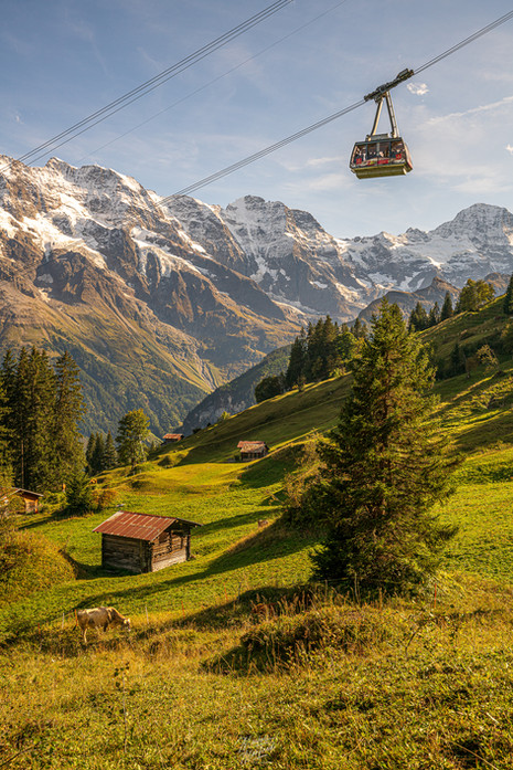 Mürre with Schilthorn Cable Car