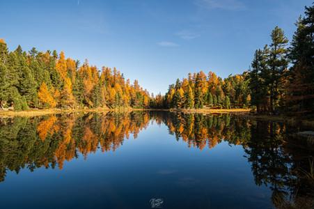 Perfect lake Mirror
