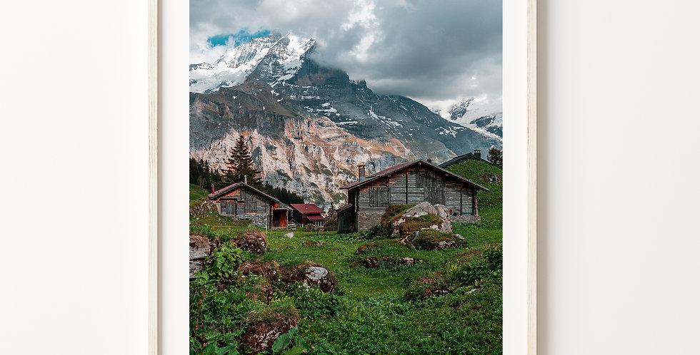 Idylic Swiss Life