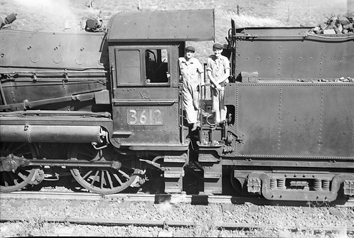 36-Class Cast Cabside Numbers