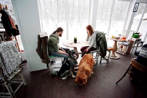 Sekta cafe и две очаровательные собаки