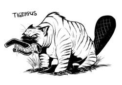 tigerpus