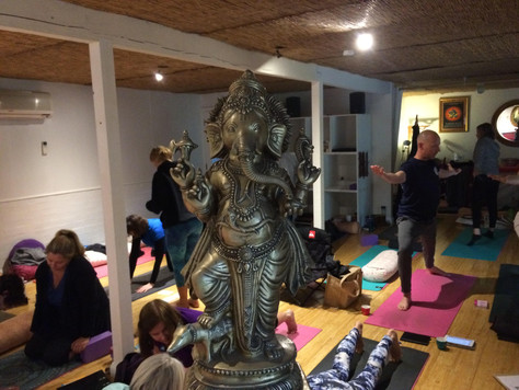 Ray of Light Yoga Teacher Training