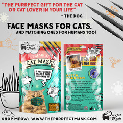 Face Masks For Cats