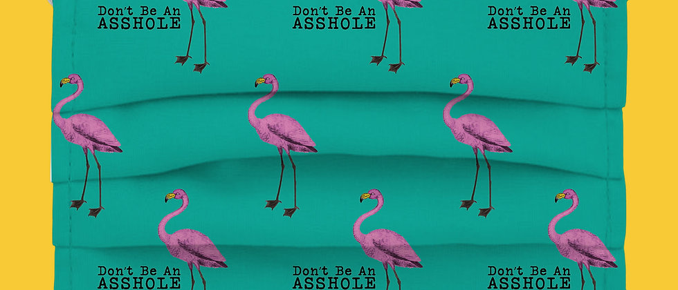 Don't Be An A$$hole Flamingos Cat