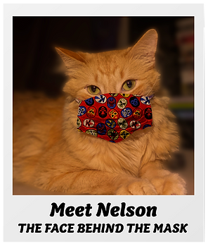 nelson-poldaroid.png