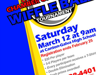 1st Annual Wiffle Ball Tournament