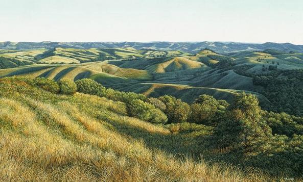 Kaipara Hills Vista - Mark Cross
