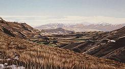 Matt Payne Matakana Gallery