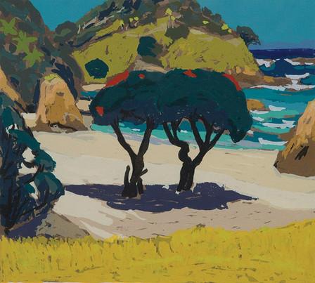 Matapouri Beach - Tom Burnett