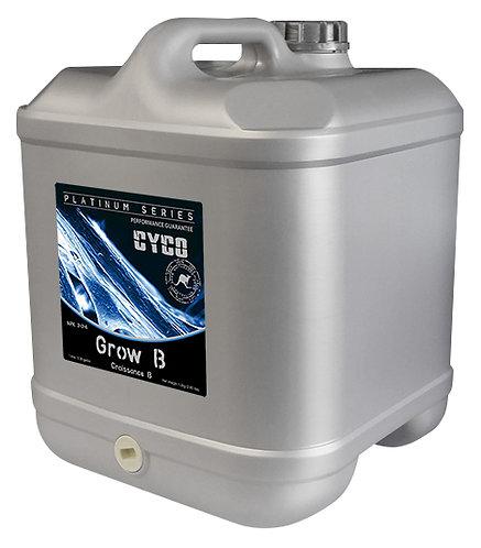 CYCO Grow B 20 Liter