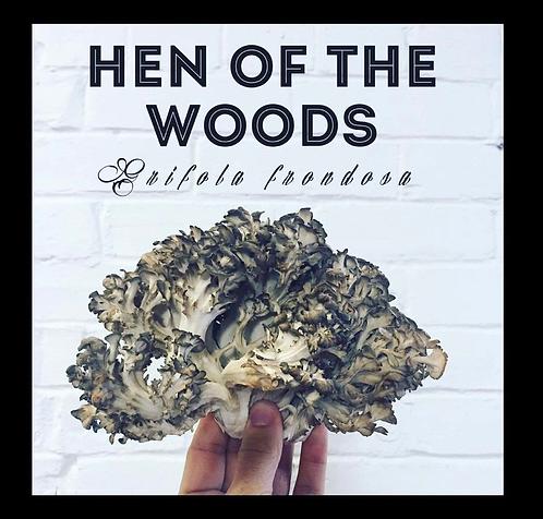 Hen Of The Woods Outdoor Mushroom Log Kit