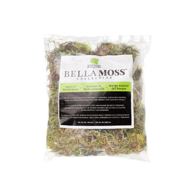 Syndicate home&garden green moss
